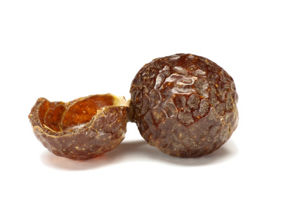 Soap Nuts- A Natural Organic Soap for Personal and Laundry Use